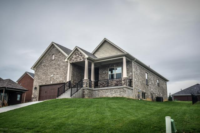 124 Nipper Ct, Shepherdsville, KY 40165 (#1517284) :: Team Panella