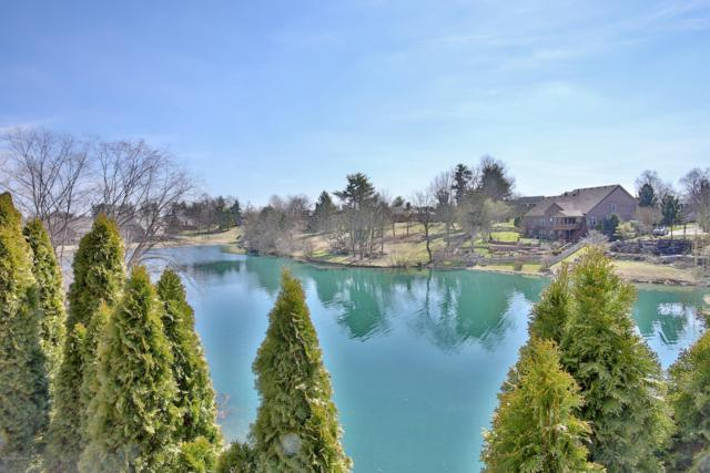 4007 Whiteblossom Estates Ct, Louisville, KY 40241 (#1523388) :: Team Panella