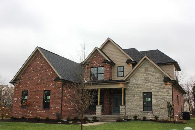 14804 Faye Meadow Ct, Pewee Valley, KY 40056 (#1496798) :: Team Panella
