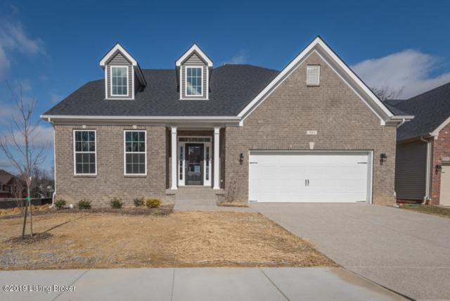 743 Dehart Ln, Louisville, KY 40243 (#1504896) :: The Sokoler-Medley Team