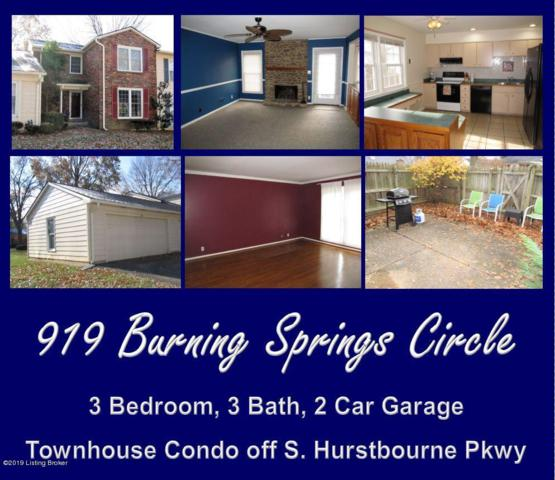 919 Burning Springs Cir, Louisville, KY 40223 (#1520206) :: The Stiller Group