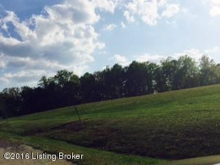 30 Rocky Hill Estates Rd, Clarkson, KY 42726 (#1446833) :: Segrest Group