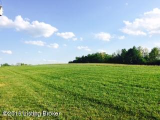 32 Rocky Hill Estates Rd, Clarkson, KY 42726 (#1446835) :: Segrest Group