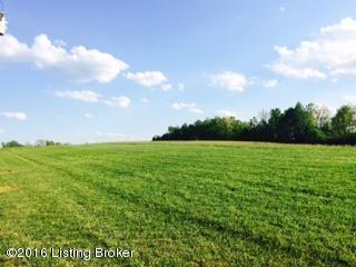 35 Rocky Hill Estates Rd, Clarkson, KY 42726 (#1446838) :: Segrest Group