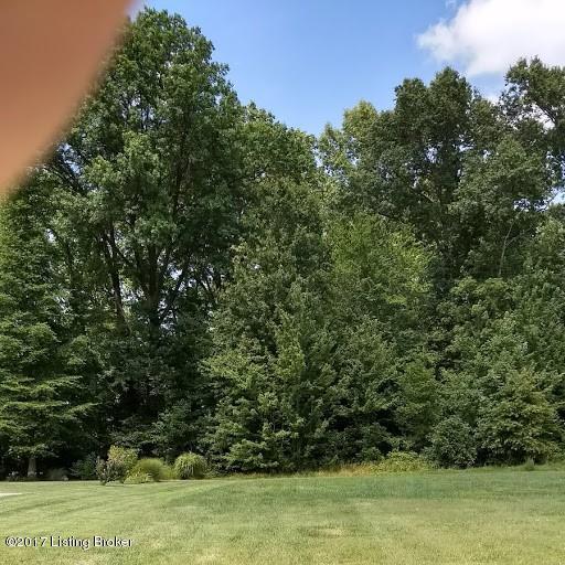 8415 Grandel Forest Way, Louisville, KY 40258 (#1481933) :: The Sokoler-Medley Team