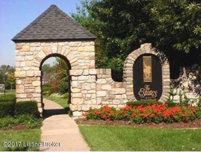 1206 Ava Pearls Way, Louisville, KY 40245 (#1484384) :: Team Panella