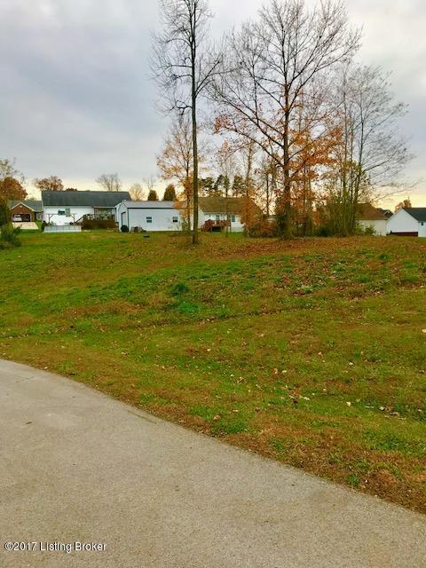 Lots 54&55 Rolling Ridge Ct, Brandenburg, KY 40108 (#1490330) :: The Stiller Group