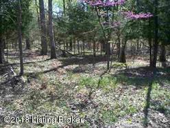 223 Pine View Ct, Brandenburg, KY 40108 (#1493182) :: Keller Williams Louisville East