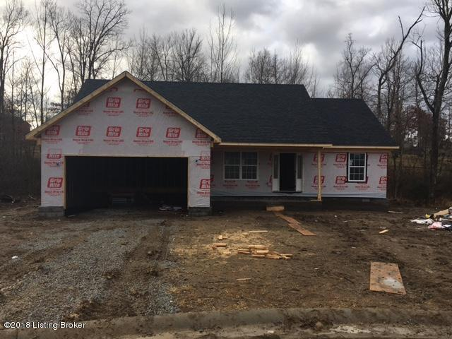 117 Pennyrile Dr, Coxs Creek, KY 40013 (#1493749) :: Team Panella