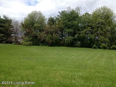 120 Castleton Dr, Bardstown, KY 40004 (#1495012) :: Team Panella