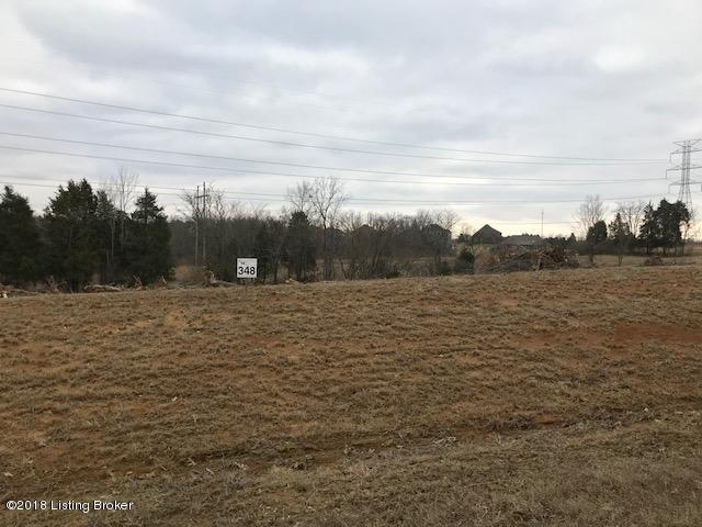 Lot 348 Zaynate Ct #348, Louisville, KY 40245 (#1495255) :: Team Panella