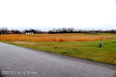Lot 14 Turkey Foot Ct, Radcliff, KY 40160 (#1499270) :: The Stiller Group