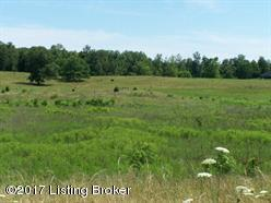 Lot 2A White Ln, Cecilia, KY 42724 (#1503719) :: Segrest Group