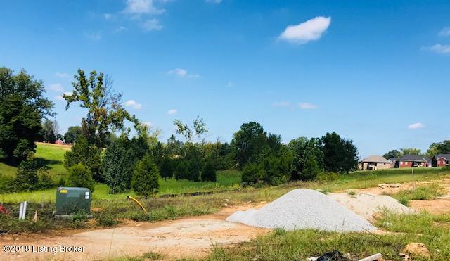 LOT 409 Grand Oak Blvd, Shepherdsville, KY 40165 (#1514540) :: The Stiller Group