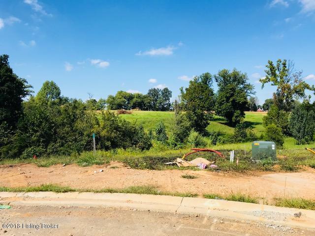 LOT 408 Grand Oak Blvd, Shepherdsville, KY 40165 (#1514541) :: The Stiller Group
