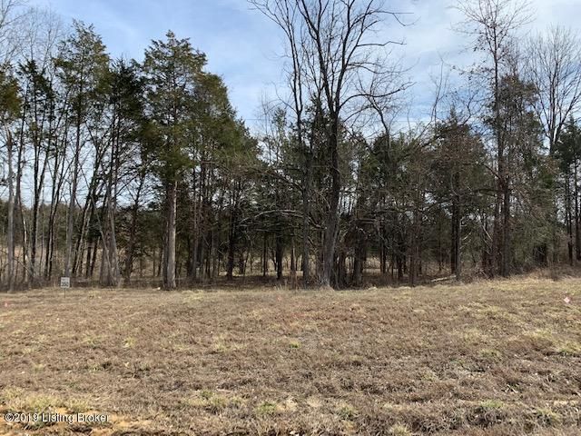 Lot 350 Zaynate Ct #350, Louisville, KY 40245 (#1525394) :: The Price Group