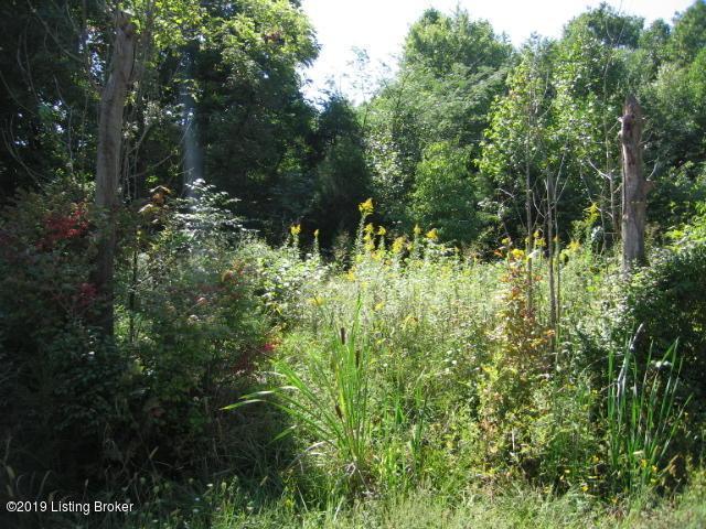00 World View Cir, Shepherdsville, KY 40165 (#1531066) :: The Sokoler-Medley Team