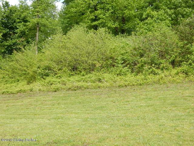 79 Heritage Hill Pkwy, Shepherdsville, KY 40165 (#1531098) :: The Sokoler-Medley Team