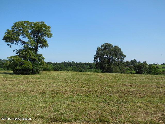 0 Buck Creek Rd, Campbellsburg, KY 40011 (#1538572) :: Team Panella