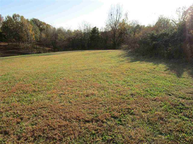 3075 Ashes Creek Ln, Bloomfield, KY 40008 (#1582016) :: Team Panella