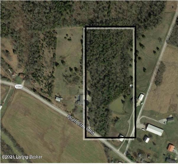 Tract 2 Plum Creek Rd, Taylorsville, KY 40071 (#1588564) :: The Sokoler Team