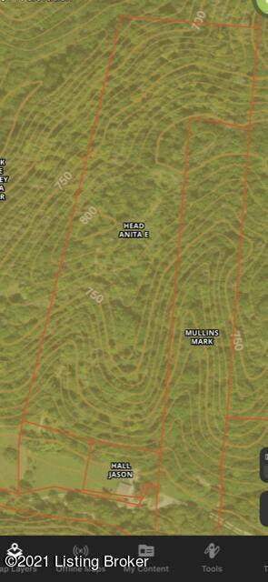 Lot 4704 Upper Middle Creek, Bedford, KY 40006 (#1588582) :: The Sokoler Team