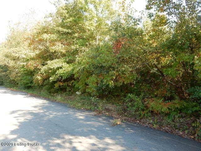 00 Sarah Way, Shepherdsville, KY 40165 (#1597344) :: Trish Ford Real Estate Team | Keller Williams Realty
