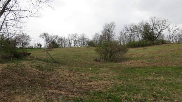 1 Herndon Rd, Lawrenceburg, KY 40342 (#1598455) :: Herg Group Impact