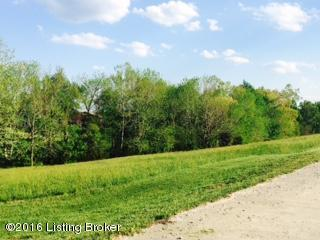 37 Rocky Hill Estates Rd, Clarkson, KY 42726 (#1446840) :: The Price Group