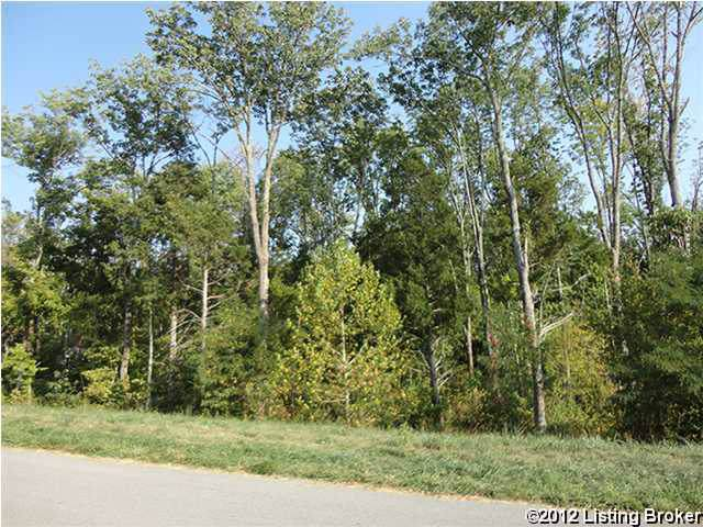 7105 Colton (Lot 375) Rd, Crestwood, KY 40014 (#1238531) :: Team Panella