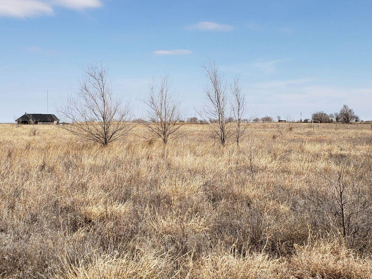 401 Farm Road 2378 - Photo 1