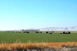 2070 County Road 1008 - Photo 1