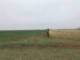 0-Lot 12 Farm Road 2060 - Photo 1