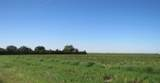 3 Farm Road 179 - Photo 1