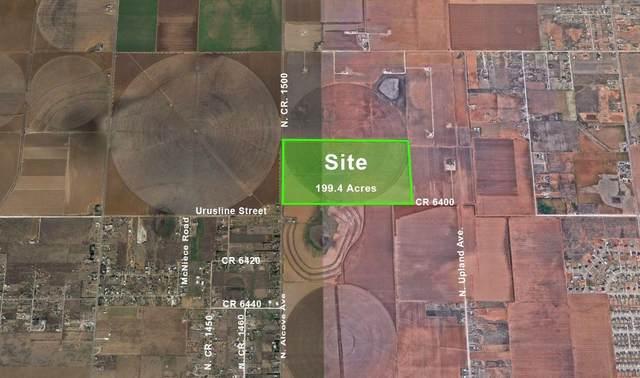 0 N County Road 1500, Lubbock, TX 79416 (MLS #202011331) :: Scott Toman Team