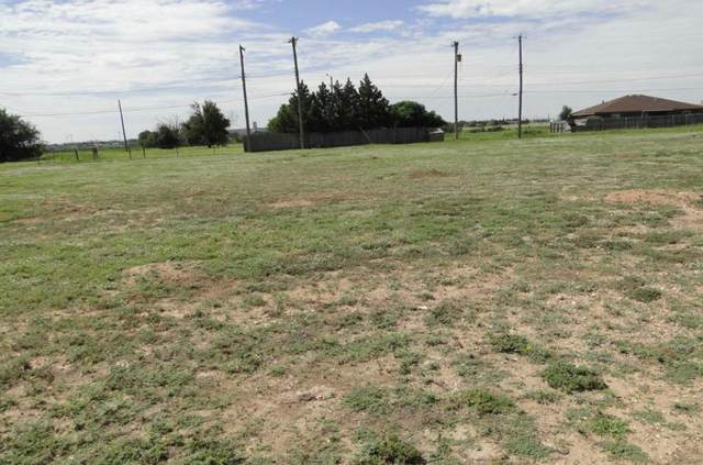 1912 Idalou Road, Lubbock, TX 79403 (MLS #202100387) :: Scott Toman Team