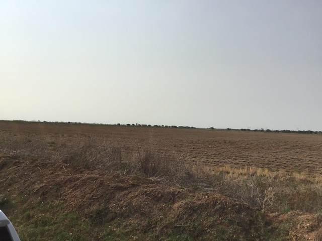 7001 County Road 6000, Shallowater, TX 79363 (MLS #202100964) :: Reside in Lubbock | Keller Williams Realty
