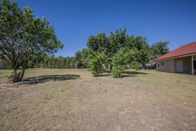 4347 N Boston Avenue, Lubbock, TX 79415 (MLS #202101747) :: Better Homes and Gardens Real Estate Blu Realty