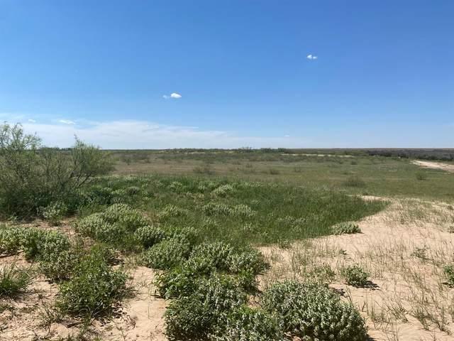 0 Farm Road 2053, Odonnell, TX  (MLS #202102091) :: Reside in Lubbock | Keller Williams Realty