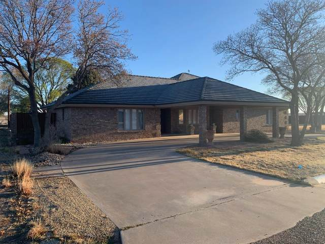 1409 2nd, Plains, TX 79355 (MLS #202103219) :: Rafter Cross Realty