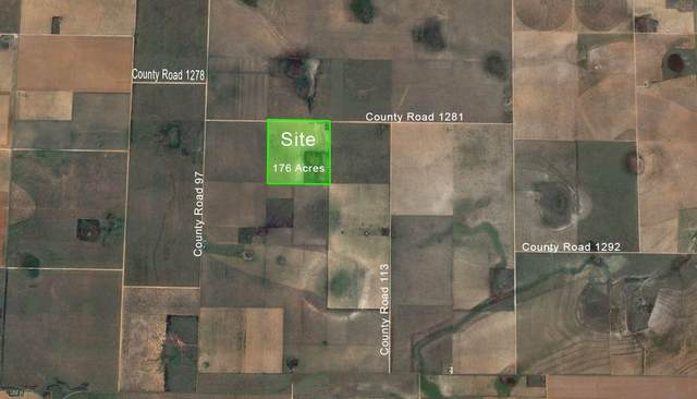 0 County Road 1281, Maple, TX 79344 (MLS #202104617) :: Better Homes and Gardens Real Estate Blu Realty