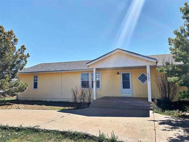 17205 County Road 2130, Lubbock, TX 79423 (MLS #202104658) :: Rafter Cross Realty
