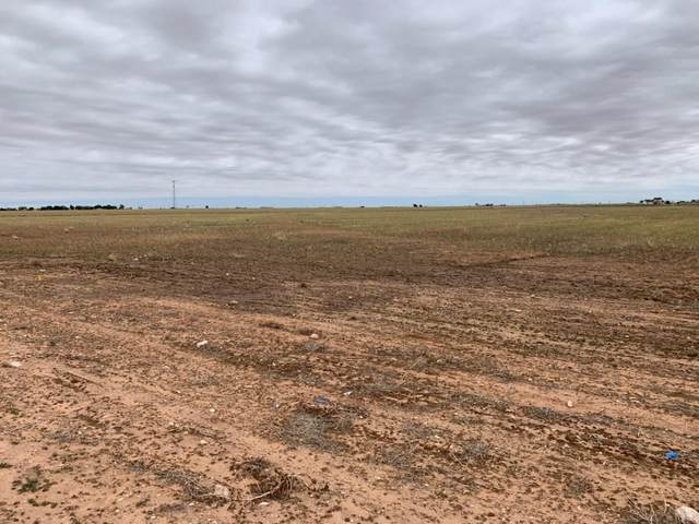 18402 County Road 2300, Lubbock, TX 79423 (MLS #202105068) :: Stacey Rogers Real Estate Group at Keller Williams Realty