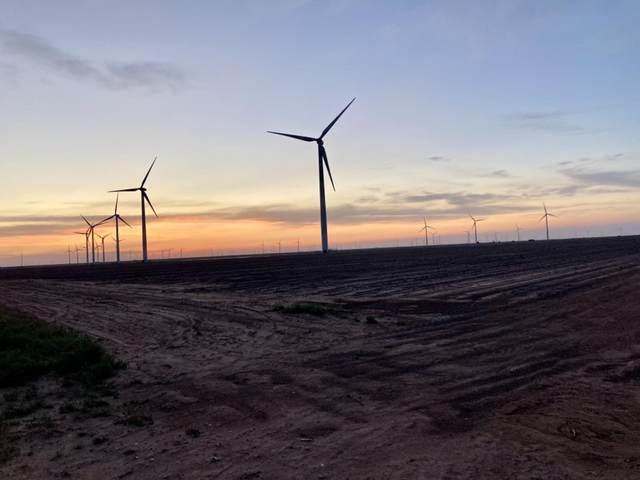 720 County Road 103, Mcadoo, TX 79243 (MLS #202105428) :: Duncan Realty Group