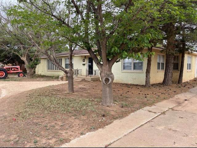 509 Clubview Drive, Levelland, TX 79336 (MLS #202105755) :: The Lindsey Bartley Team