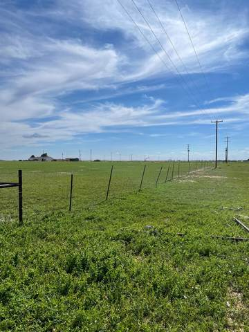 0 Quail Road, Wolfforth, TX 79382 (MLS #202105795) :: Stacey Rogers Real Estate Group at Keller Williams Realty