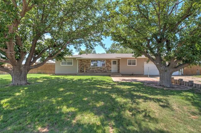 1910 County Road 1100, Lubbock, TX 79407 (MLS #202105974) :: McDougal Realtors