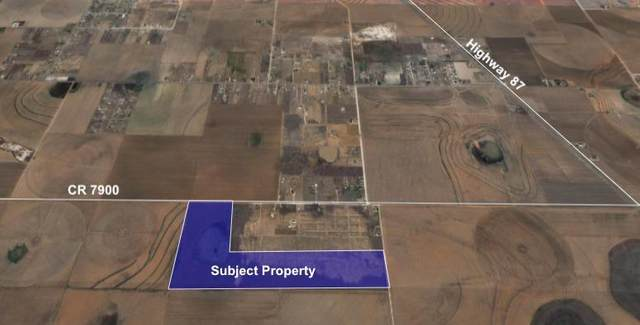 0 County Road 7900, Lubbock, TX 79423 (MLS #202106289) :: Better Homes and Gardens Real Estate Blu Realty