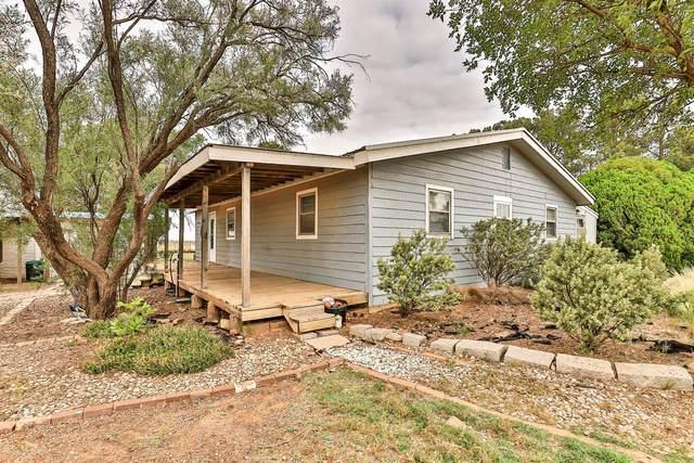 3401 Farm Road 1729, Lubbock, TX 79403 (MLS #202106126) :: Lyons Realty
