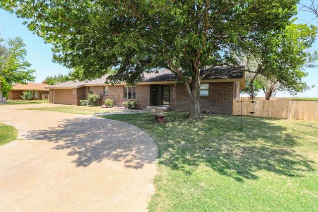 1037 NE 1st Street, Earth, TX 79031 (MLS #202106319) :: Better Homes and Gardens Real Estate Blu Realty